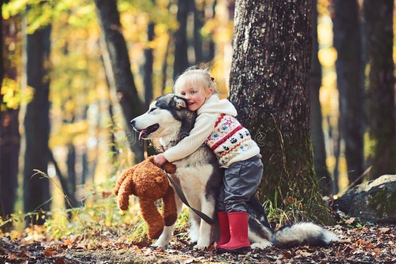 Meisje die schor hond in de herfstpark omhelzen royalty-vrije stock fotografie