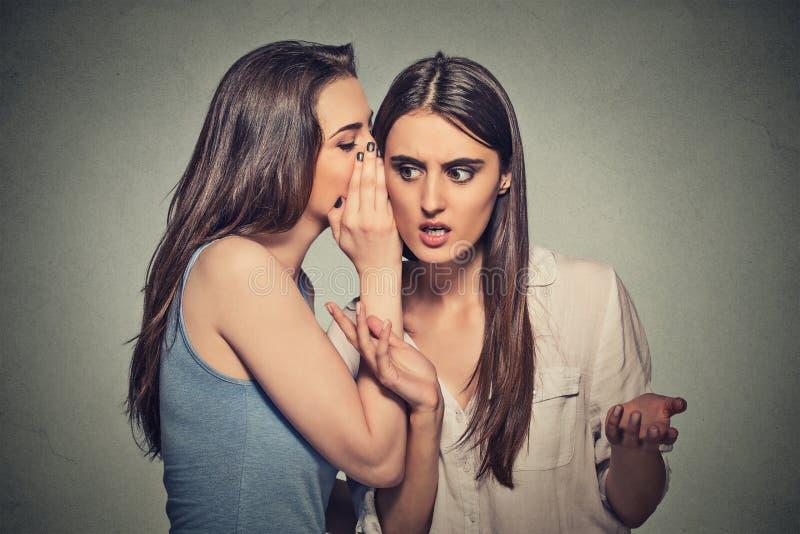 Meisje die in vrouwenoor fluisteren die haar stuitend geheim vertellen royalty-vrije stock fotografie