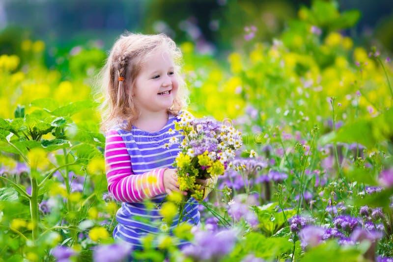 Meisje die wilde bloemen op een gebied plukken stock foto