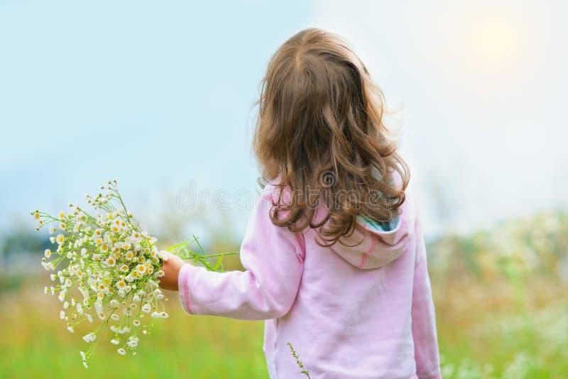 Meisje die wilde bloemen plukken stock afbeelding