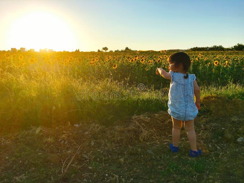Meisje die zon met haar vinger richten die zich op de rand van het zonnebloemgebied bevinden royalty-vrije stock foto