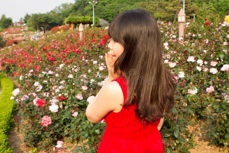 Meisje door de roze tuin wordt verrast die stock foto's