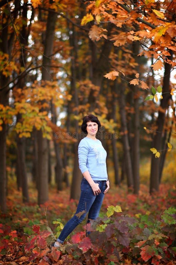 Meisje in een geel de herfstbos stock afbeeldingen