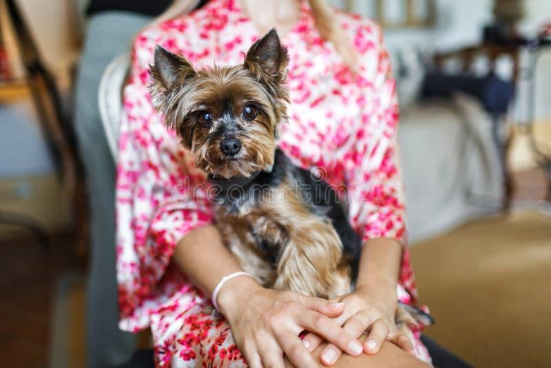 Meisje in een gekleurde robe en haar leuke hond, close-up stock fotografie