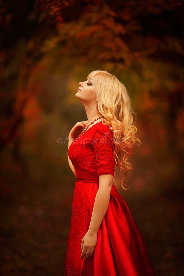Meisje in een lange rode kleding in het de herfstbos royalty-vrije stock foto's