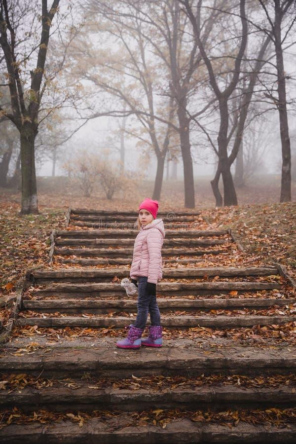 Meisje in een roze jasje die in een de herfst nevelig bos lopen in park stock foto's