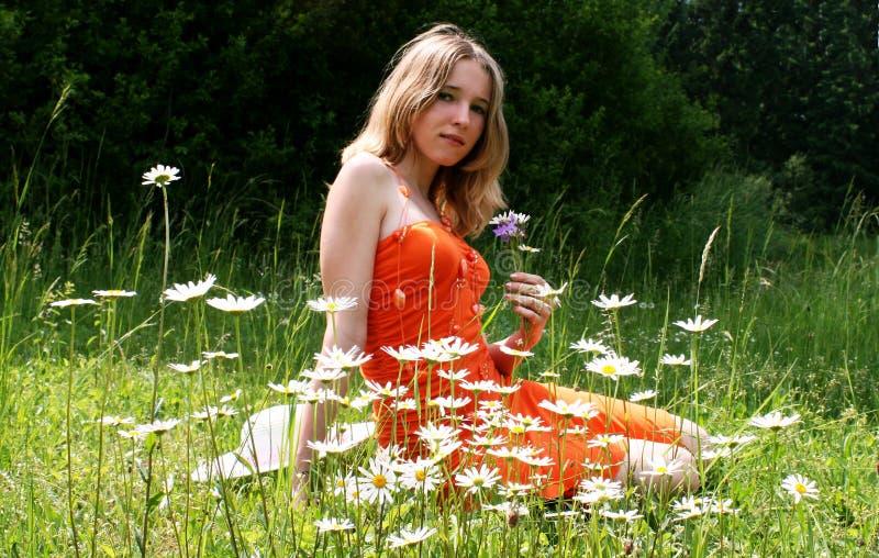 Meisje in een weide stock afbeeldingen