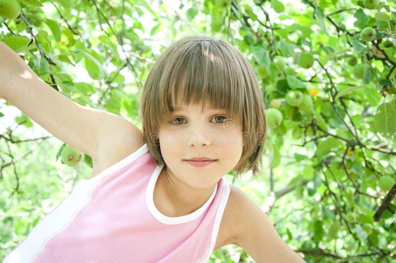 Meisje en appel-boom stock afbeeldingen