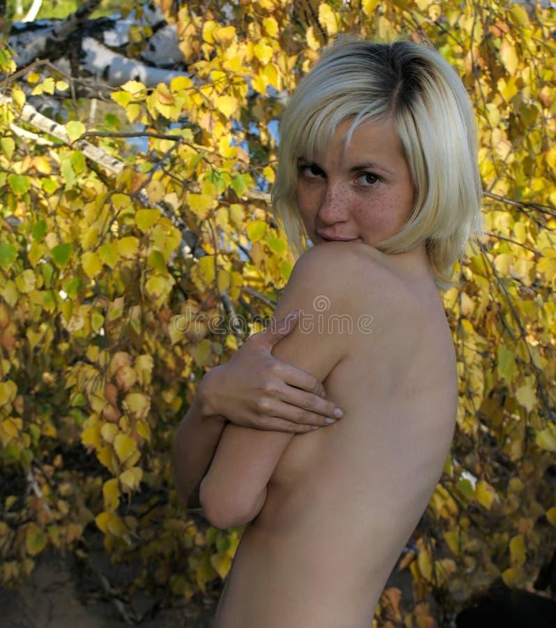 Download Meisje en de Herfst stock foto. Afbeelding bestaande uit meisje - 296210