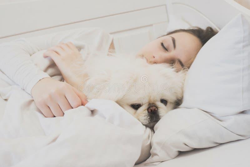 Meisje en haar hond in het bed stock fotografie