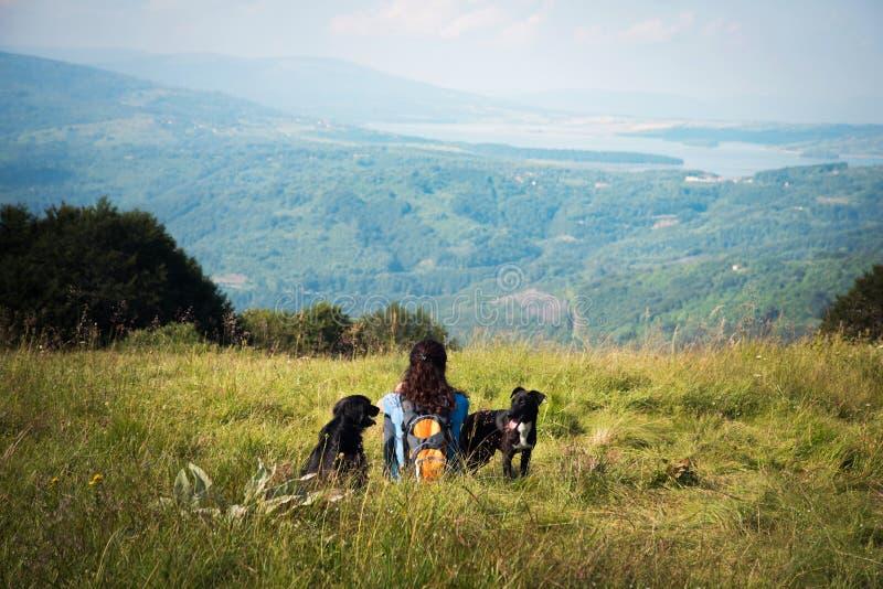 Meisje en haar twee honden die op het gras zitten royalty-vrije stock afbeeldingen