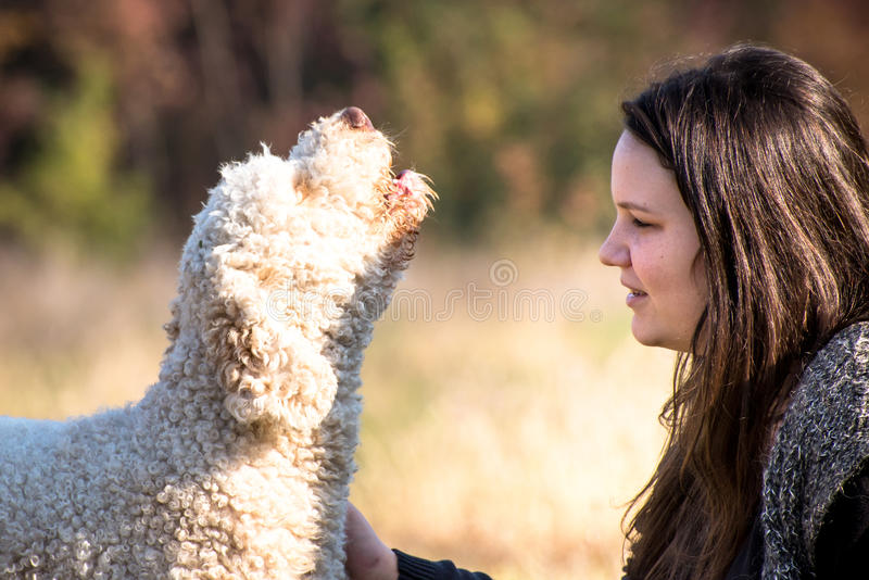 Meisje en haar zingende hond stock foto