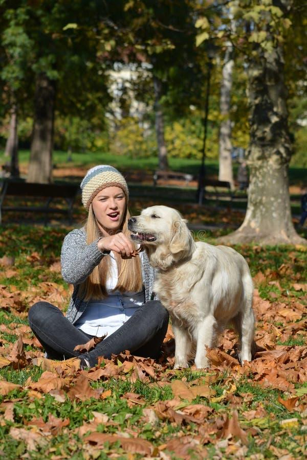 Meisje en hond in een park royalty-vrije stock afbeeldingen