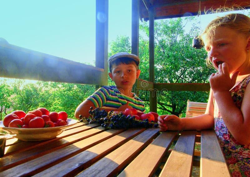 Meisje en jongen met fruit in de tuin Mooi weinig landbouwersmeisje en jongen die organische vruchten, druiven, appelen eten E stock fotografie