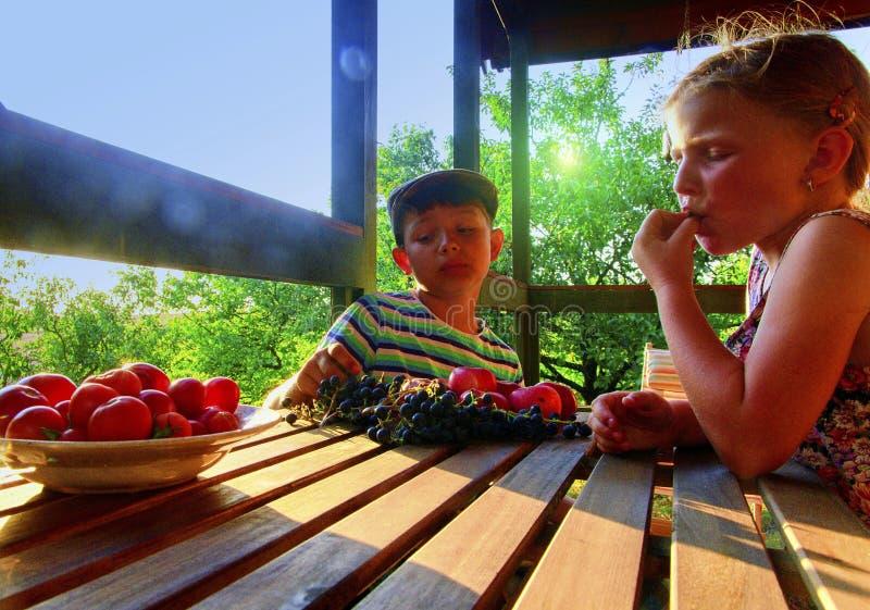 Meisje en jongen met fruit in de tuin Mooi weinig landbouwersmeisje en jongen die organische vruchten, druiven, appelen eten E royalty-vrije stock fotografie