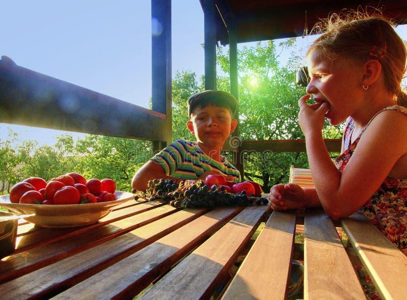 Meisje en jongen met fruit in de tuin Mooi weinig landbouwersmeisje en jongen die organische vruchten, druiven, appelen eten E royalty-vrije stock afbeelding