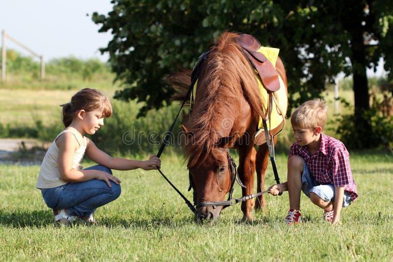 Meisje en jongen met poneypaard stock afbeeldingen