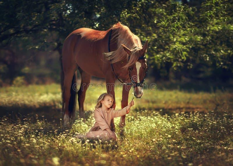 Meisje en paard stock foto's