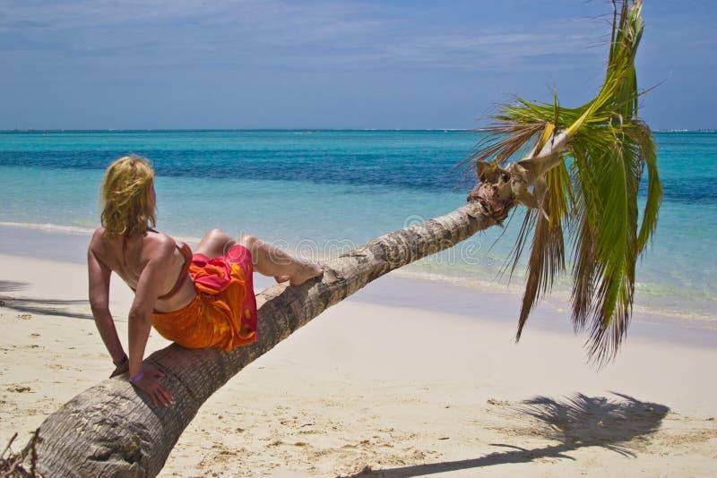 Meisje en palm royalty-vrije stock foto