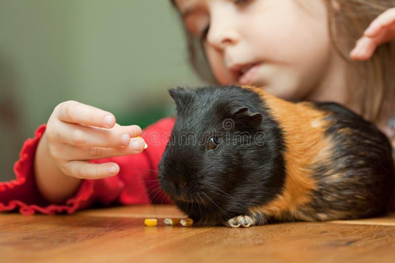 Meisje en proefkonijn stock foto
