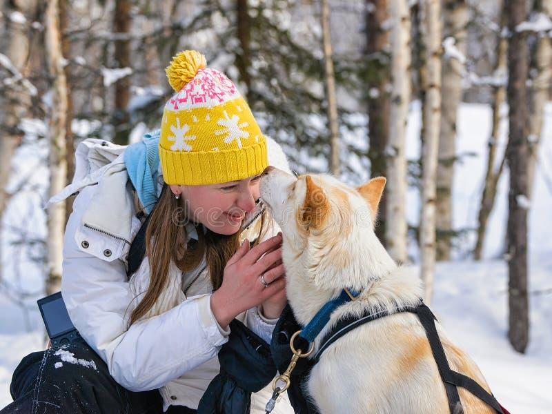 Meisje en Schor hond in Lapland Finland royalty-vrije stock fotografie