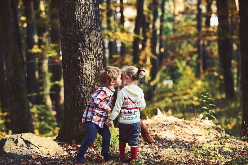Meisje en weinig jongen die in de herfstbos kussen stock fotografie