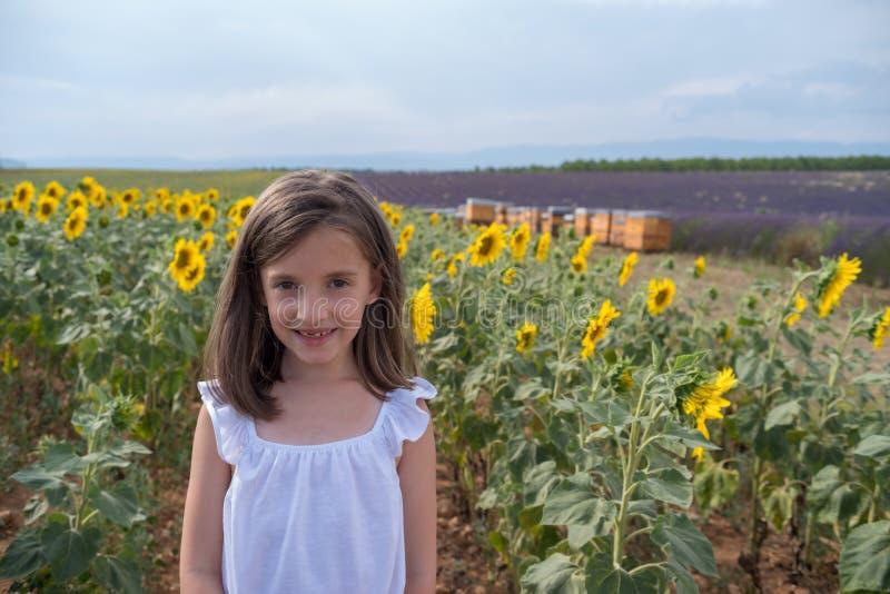 Meisje in gebiedszonnebloemen, de Provence, Zuid-Frankrijk royalty-vrije stock fotografie