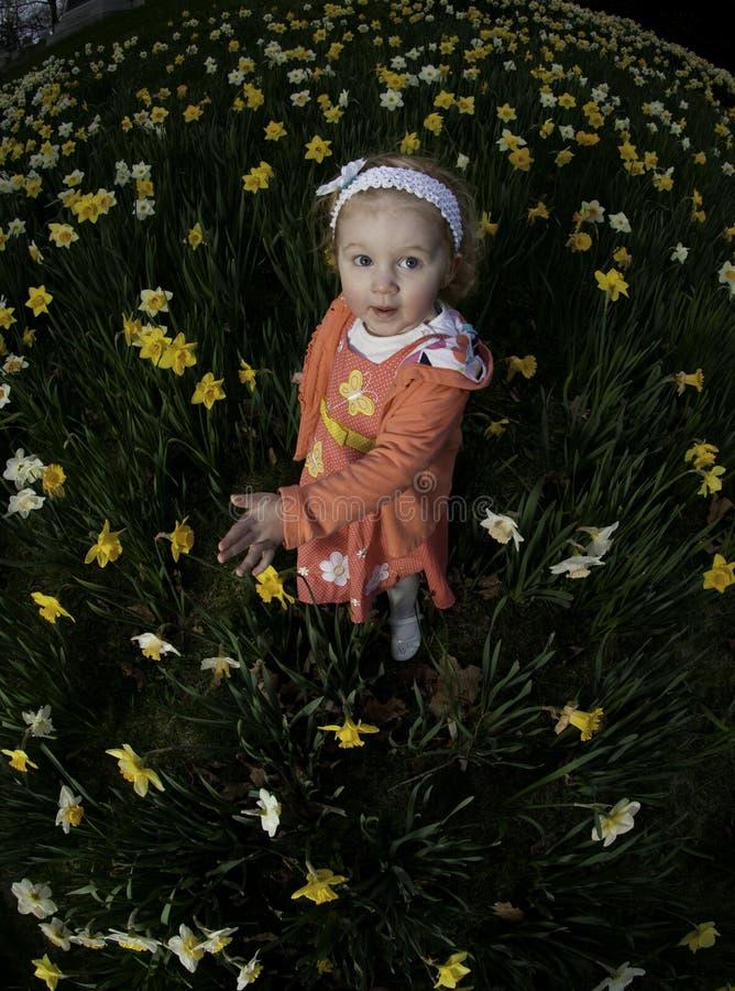 Meisje in gele narcissen no.3 stock foto's