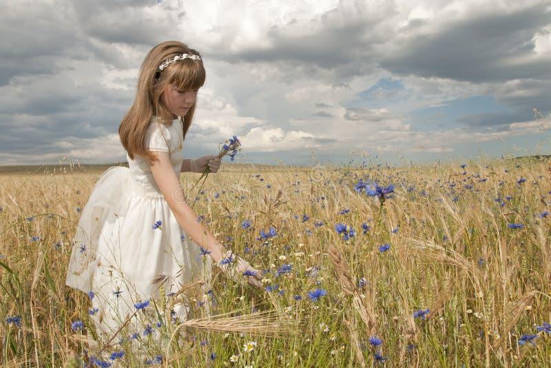 Meisje in heilige kerkgemeenschapkleding stock afbeelding