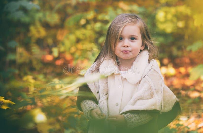 Meisje in herfstbos stock fotografie
