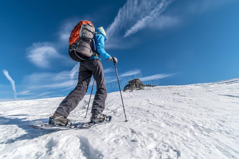 Meisje het backpacking met sneeuwschoenen in Alpen op een zonnige dag, Saualpe-waaier, Oostenrijk royalty-vrije stock afbeelding