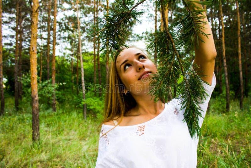 Meisje in het bos stock foto's