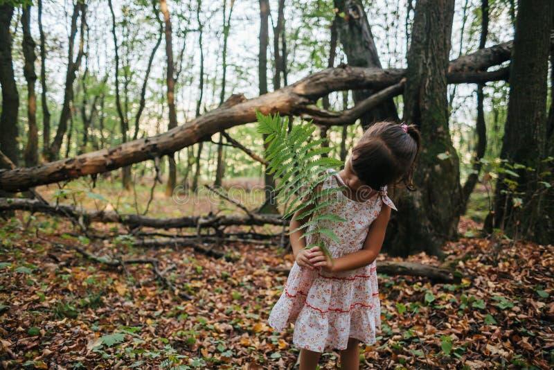Meisje in het bos met varens stock fotografie