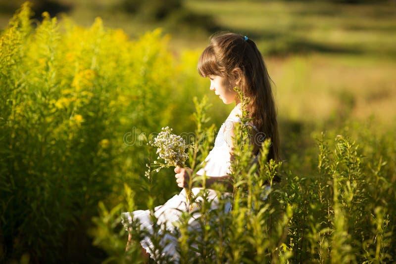 Meisje het plukken bloemen op een gebied stock afbeelding