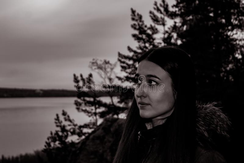 Meisje in het schemeringbos stock afbeeldingen
