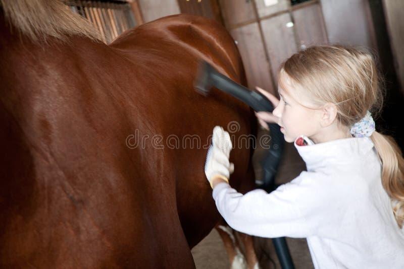 Meisje het schoonmaken paard stock afbeelding