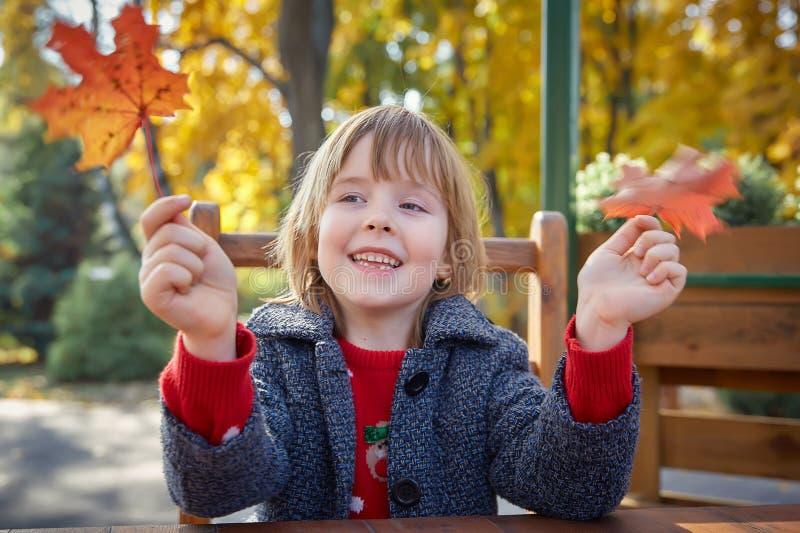 Meisje het spelen met de herfstbladeren royalty-vrije stock foto