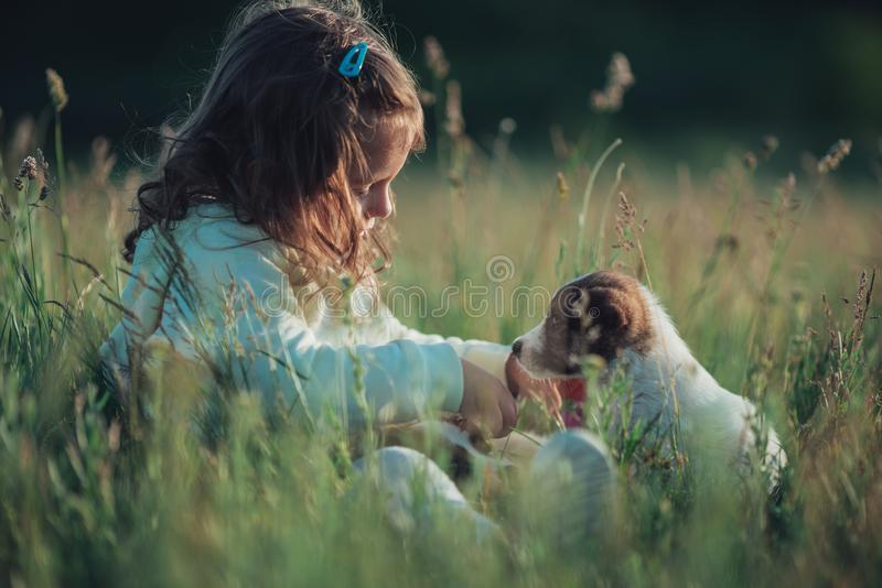 Meisje het spelen met haar puppyhond in het park royalty-vrije stock fotografie