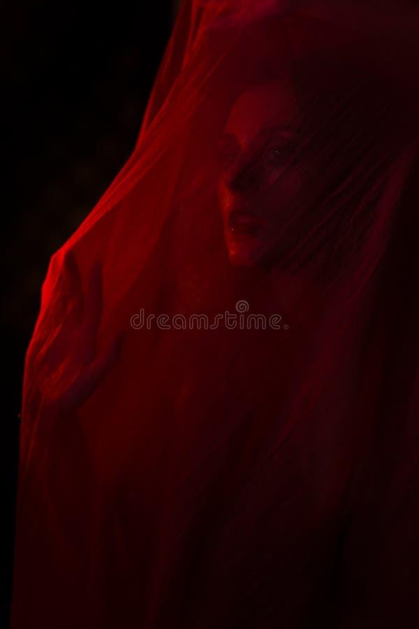 Meisje het stellen met rode stof royalty-vrije stock afbeeldingen