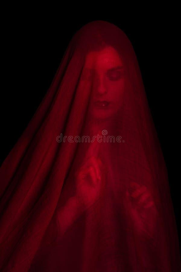 Meisje het stellen met rode stof royalty-vrije stock foto