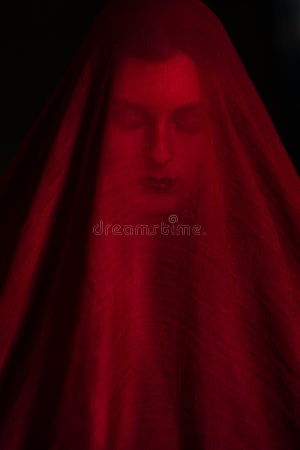 Meisje het stellen met rode stof stock foto's