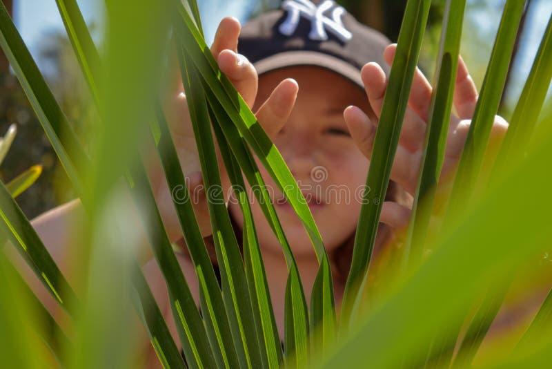 Meisje het verbergen achter de groene bladeren tijdens stock afbeeldingen