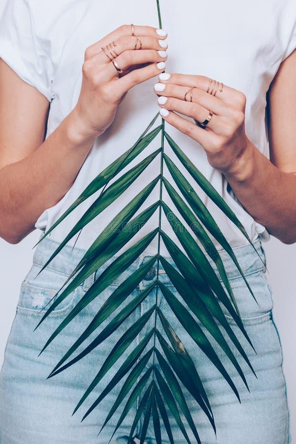 Meisje in jeans en een T-shirt die een palmblad in handen houden royalty-vrije stock foto's
