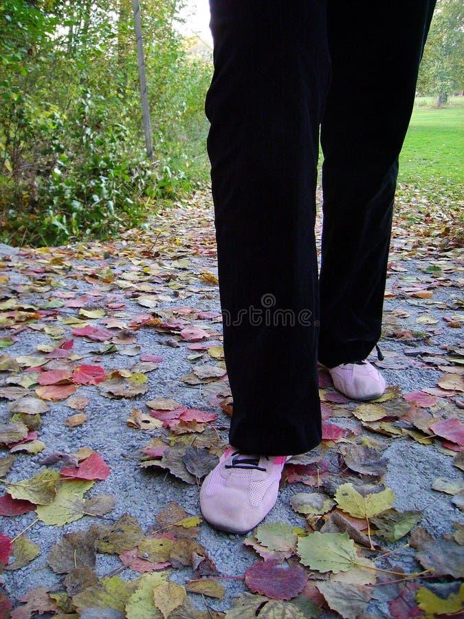Download Meisje-lopen-x stock afbeelding. Afbeelding bestaande uit broeken - 283131