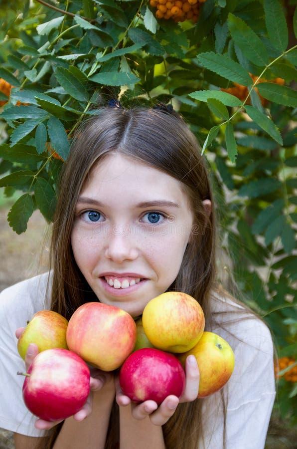 Meisje met appelenportret Het meisje is gelukkige, rijpe rode appelenoogst royalty-vrije stock afbeelding