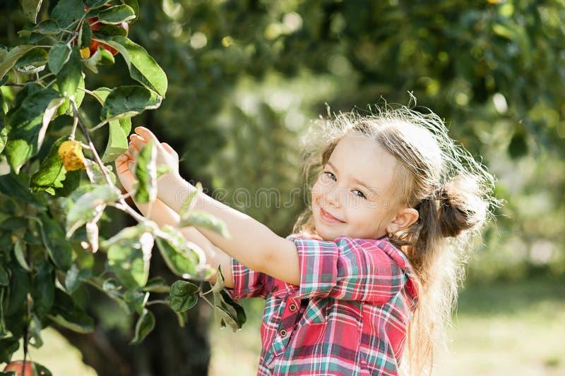 Meisje met Apple in de Apple-Boomgaard stock foto