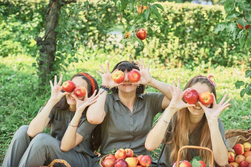 Meisje met Apple in de Apple-Boomgaard Mooi Meisje die Organisch Apple in de Boomgaard eten Het concept van de oogst De herfst ve stock afbeelding