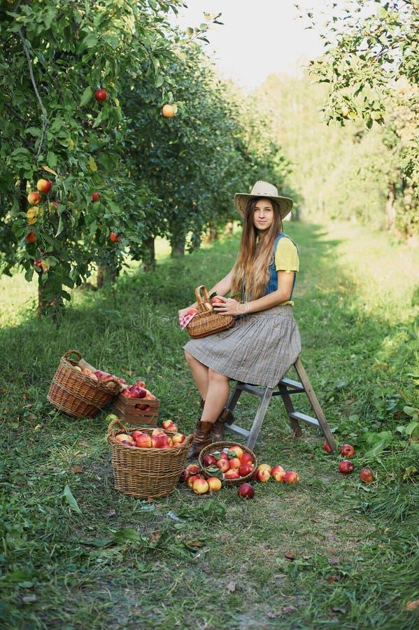 Meisje met Apple in de Apple-Boomgaard Mooi Meisje die Organisch Apple in de Boomgaard eten Het concept van de oogst De herfst ve royalty-vrije stock foto