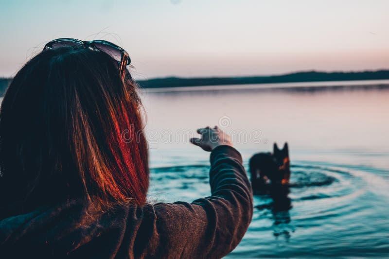 Meisje met een hond op het meer stock afbeeldingen