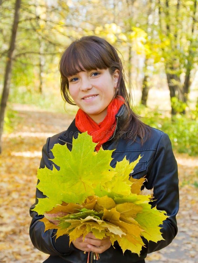 Meisje met esdoornbladeren in park royalty-vrije stock fotografie